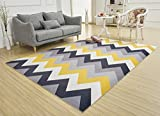 SANNIX Soft Fabric Shaggy Area Rug Fluffy Living Room Carpets for Home Decor Nursery Rugs with Non-Skid Rubber Backing waves 200X300CM