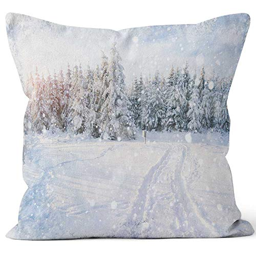 Nine City Beautiful Color high res with a Holiday Winter Subject Throw Pillow Cushion Cover,HD Printing Decorative Square Accent Pillow Case,24