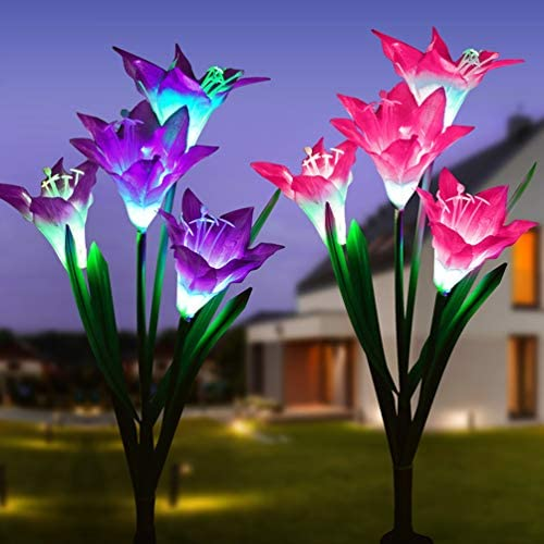 Charging Changing Multiple Decorates Backyard product image