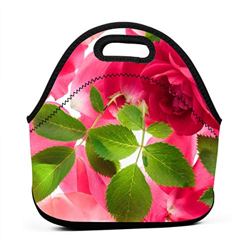 (LKJDAD Pink Roses and Foliage Lunch Bag, Thick Insulated Lunchbox Bags,Tote Box with Zipper Closure for Kid Travel Picnic Office)