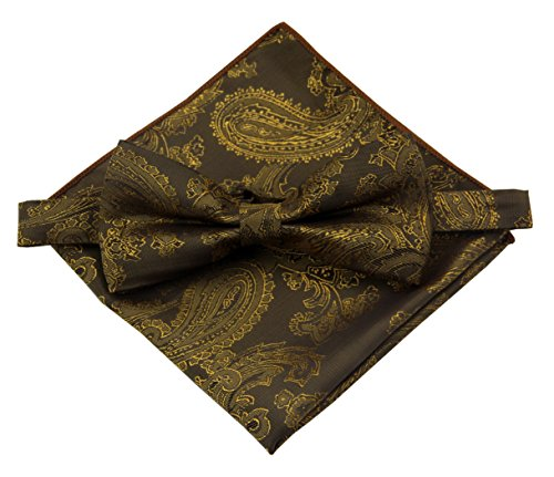 Copper Paisley (Various Paisleys Mens Silk Bowtie and Pocket Square Set (Copper Brown))