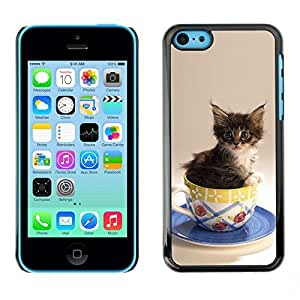 YOYO Slim PC / Aluminium Case Cover Armor Shell Portection //Cute Cat Kitten In A Cup //Apple Iphone 5C