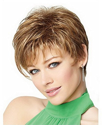 [Diy-Wig Natural Highlight Short Mixed Color Puff Straight Short Synthetic Wig for Fashion Women] (Cheap Color Wigs)