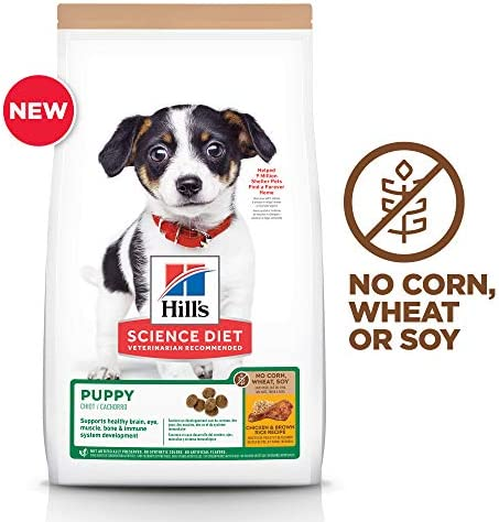 Hill s Science Diet Dry Puppy Food, No Corn, Wheat or Soy, Chicken Recipe