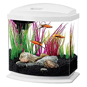 Aqueon LED MiniBow Aquarium Starter Kit with LED Lighting, 2.5 Gallon, White