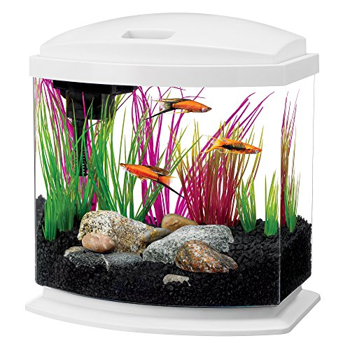 Aqueon LED Minibow Aquarium Starter Kits with LED Lighting, 2.5 Gallon, White