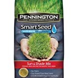 PENNINGTON SEED 100526673 Sun/Shade Seed Mix