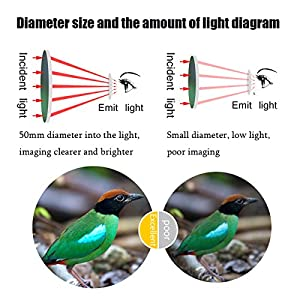 40X60 Monocular Telescope Aopet Dual Focus Optical BAK4 Prism Telescope Waterproof HD View Spotting Scopes Telescopes with Tripod Holder & Cellphone Adapter for Hunting Camping Traveling Hiking