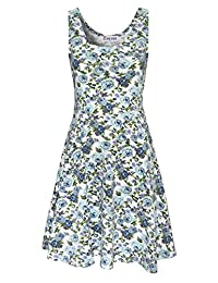 TAM WARE Womens Casual Fit and Flare Floral Sleeveless Dress TWCWD054-WHITEBLUE-US M