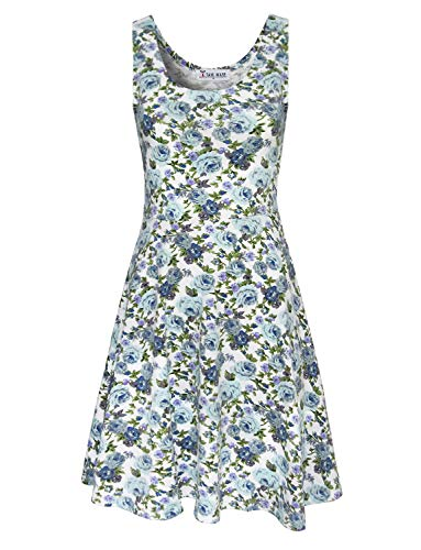 TAM WARE Womens Casual Fit and Flare Floral Sleeveless Dress TWCWD054-WHITEBLUE-US XL