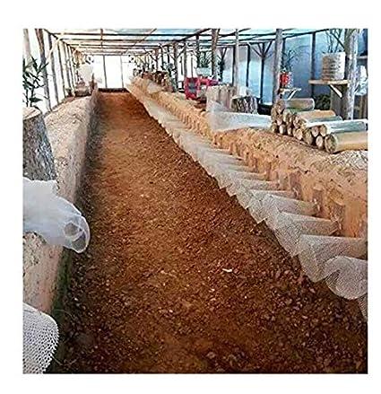 Peut /Être Coup/é NIUFHW Poulet Net Elevage Netting Filet Plastique Cl/ôtures de Jardin Maille S/écurit/é des Enfants Protection Filet de Soutien for Plantes Grimpantes Blanc 1x4m Size : 1 * 2m
