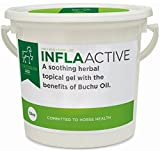 Equestrain AID InflaACTIVE Gel 32oz -- A superior horse remedy formulated from a unique African Buchu herb extract. An effective natural anti-inflammatory, antibactrial and anti-fungal agent.