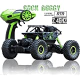 MTC 2.4Ghz 1/18 RC Rock Crawler Vehicle Buggy Car 4 WD Shaft Drive High Speed Remote Control Monster Off Road Truck... Colour May Vary