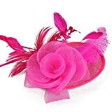 TBNA Bridal Flower Feathers Hat Wedding Fascinator Cocktail Tea Party Headwear Hair Accessories (Rose)