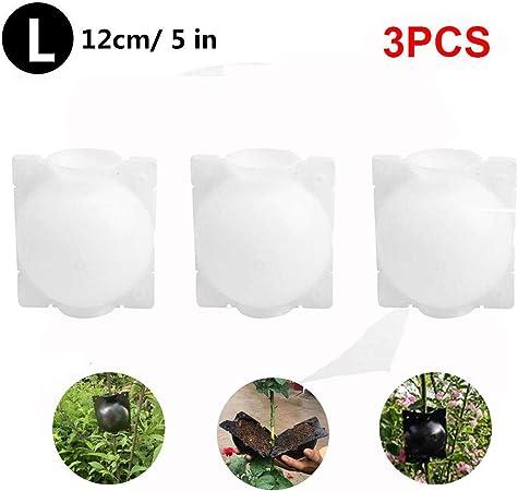 N/H 3PCS Dispositivo de enraizamiento de Plantas Reutilizable Caja de Cultivo de raíces de Plantas Reutilizable Bola de propagación Caja de Bolas de Planta de enraizamiento de Bola de injerto: Amazon.es: Hogar