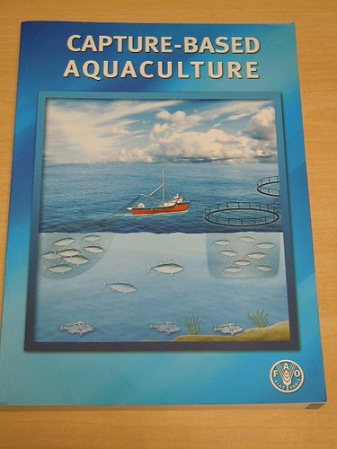 Capture-based aquaculture: The fattening of eels, groupers, tunas and yellowtails Tail Eel