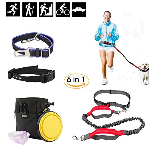 Hands Free Seat Belt Light (Raphycool Dog Leash Set Dual-Handle with Bungee, Adjustable Dog Collar, Lab Seat Belt & Collapsible Bowl, Dog Treat Training Pouch with Poop Bag Dispenser 6 in 1 Pet Set for 20+ LB Dog)