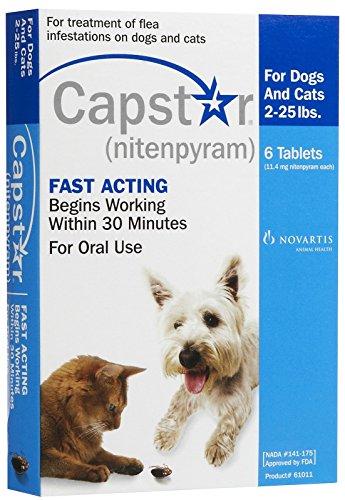 Novartis Capstar Flea Treatment - Blue - 2-25 lb - 6 -