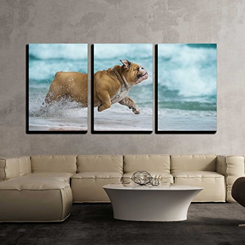 wall26 - 3 Piece Canvas Wall Art - Happy Dog Bulldog Running at The Sea - Modern Home Decor Stretched and Framed Ready to Hang - 16