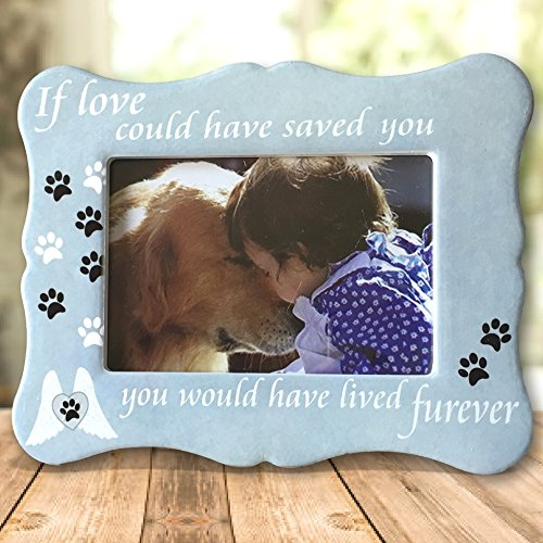 Pet Memorial (Pet Memorial Picture Frame - If Love Could Have Saved You Pet Frame - Paw Prints and Angel Wings)