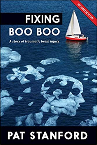 Fixing Boo Boo: A story of traumatic brain injury