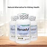 All-Natural Probiotic Supplement for Kidney
