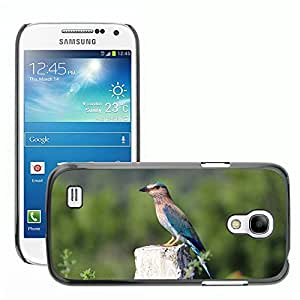 Hot Style Cell Phone PC Hard Case Cover // M00110240 Indian Roller Bird Perched Wood // Samsung Galaxy S4 Mini i9190