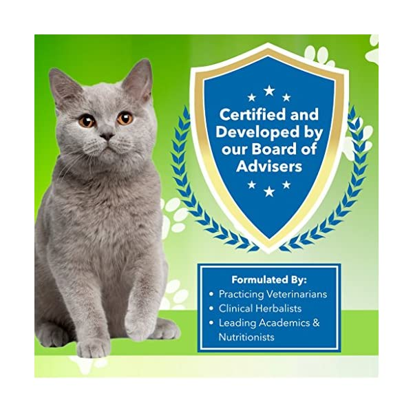 Pet Wellbeing - Milk Thistle for Cats - Natural Support for Feline Liver Health - 2oz (59ml) 6