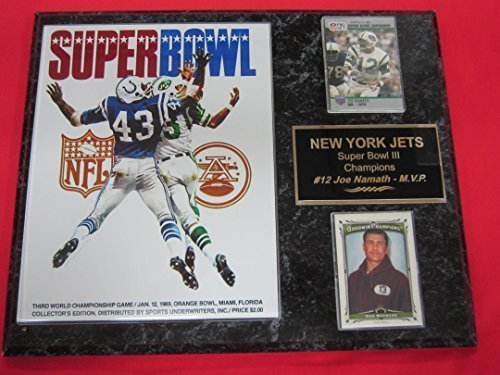 - New York Jets Super Bowl III Champions 2 Card Collector Plaque #2 w/8x10 Photo