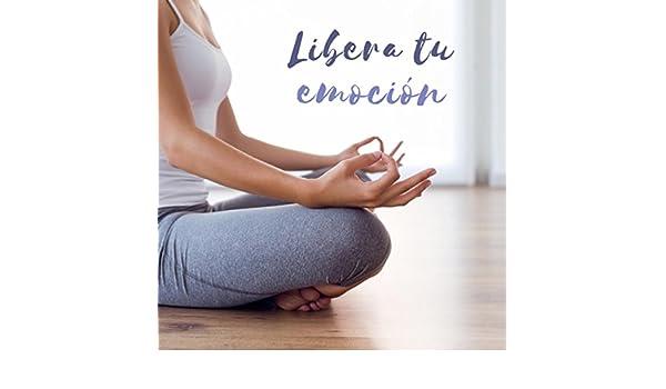 Libera tu emoción by Various artists on Amazon Music ...