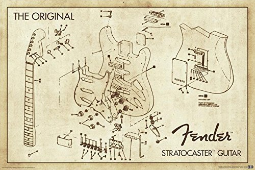 Buyartforless Stratocaster Guitar Blueprint 36x24 Art Print