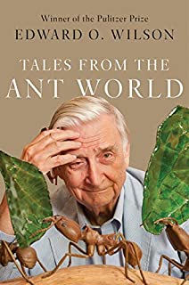 Book Cover: Tales from the Ant World