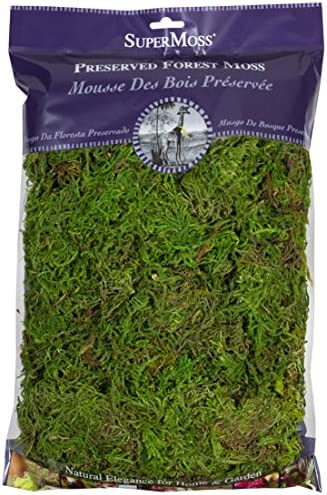 SuperMoss 25322 Forest Moss Preserved product image