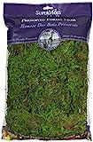 Super Moss (25322) Forest Moss Preserved, Fresh Green, 8oz