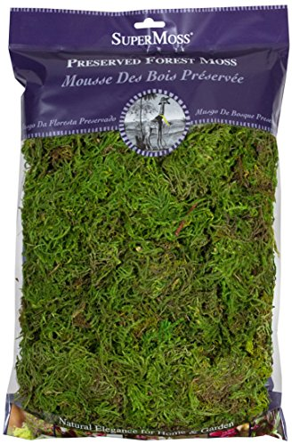 SuperMoss 7 59834 25322 8 Forest Moss Fresh Green 8oz, 200 in3 Bag (Appx (Soil Cover Decorative)