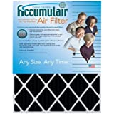 Accumulair FO20X24X6 Carbon Odor Block Filter, 20 L x 24 W x 6 H