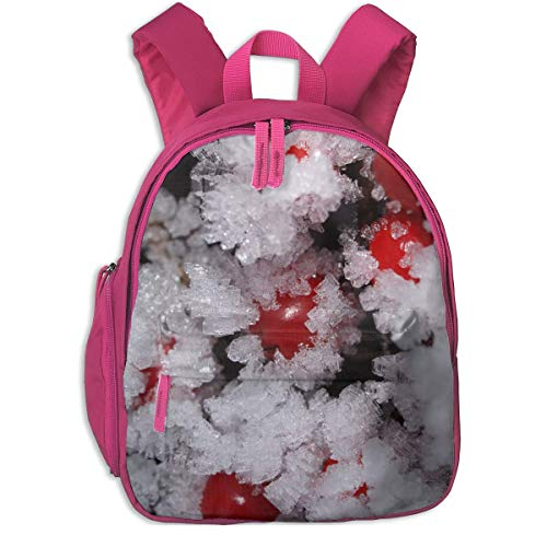 - luickyw Christmas Cold Freezing Frosty Fruit Ice Snow Winter Children School Bag Book Backpack Outdoor Travel Pocket Double Zipper