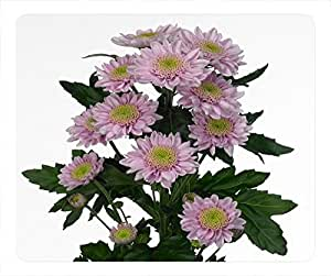Top Chinese Flowers Design Rectangular Mouse Pad Fragrance of Chrysanthemum by mcsharks