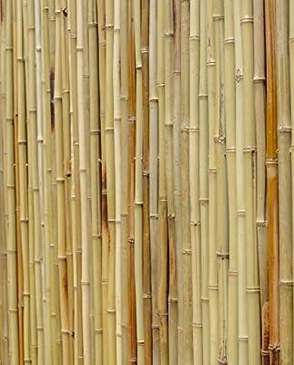 Grueso blanco (bambú, rollo de 1,9 m rollos 1,8 m de alto: Amazon ...