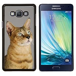 Chausie Abisinia Serengeti Sokoke- Metal de aluminio y de plástico duro Caja del teléfono - Negro - Samsung Galaxy A7 / SM-A700