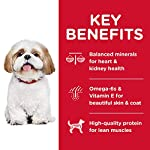 Hills-Science-Diet-Dry-Dog-Food-Adult-7-for-Senior-Dogs-Small-Bites-Chicken-Meal-Barley-Brown-Rice-Recipe-33-lb-Bag