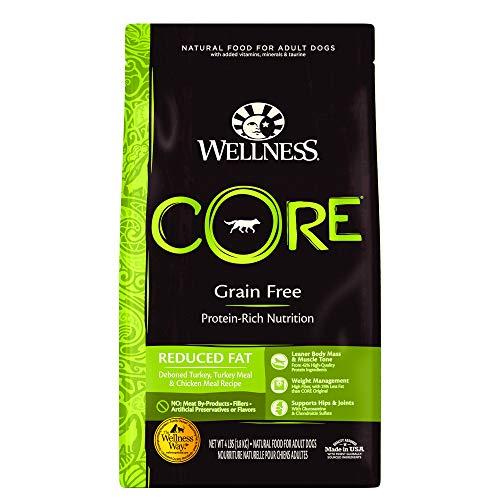 Wellness Core Natural Grain