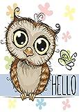 ShineSnow Cartoon Hello Owl Butterfly Floral Home Decorative Outdoor Garden Flag Double Sided, Bird Animal Welcome Seasonal House Yard Flags 12x18 Inch