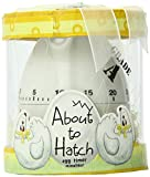 Kate Aspen'About To Hatch' Kitchen Egg Timer in Showcase Gift Box, Yellow