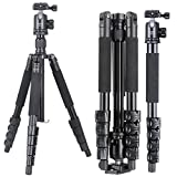XILETU TB255A+B36 monopod Tripod Light Weight Aluminum Travel Tripod Come with Quick Release Plate Ball Head and Carry Case for Canon Sony Nikon DSLR(Black)