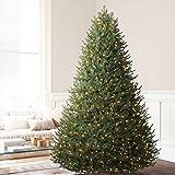 Balsam Hill BH Balsam Fir Premium Artificial Christmas Tree, 7.5 Feet, Color+Clear Lights