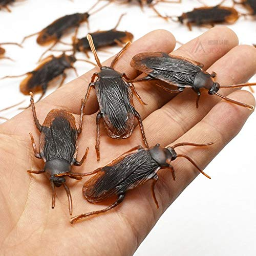 (ZAMTAC 10 Pieces Fake Prank Cockroach False Roach Simulation Black Beetle Halloween Day Girl Scary Model Crafts Miniatures DIY - (Color: 10)