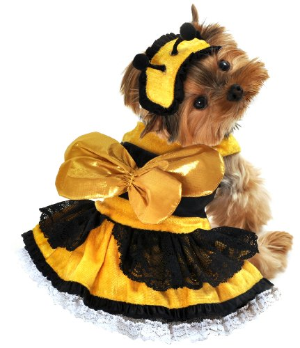 Anit Accessories Honey Bee Dog Costume, Large, 20-Inch