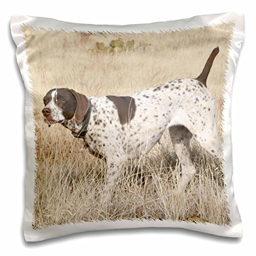 3dRose pc_2871_1 German Shorthair Pointer-Pillow Case, 16 by 16