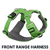 RUFFWEAR - Front Range, Everyday No Pull Dog Harness with Front Clip, Trail Running, Walking, Hiking, All-Day Wear, Meadow Green (2017), Large/X-Large